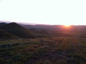 """Sunset while walking in """"The 1,000,"""" ie the 1,000 acres behind the residence."""