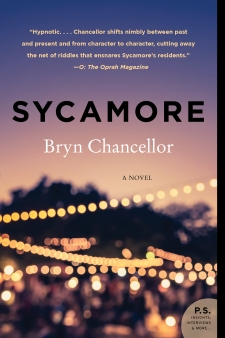 Sycamore Paperback